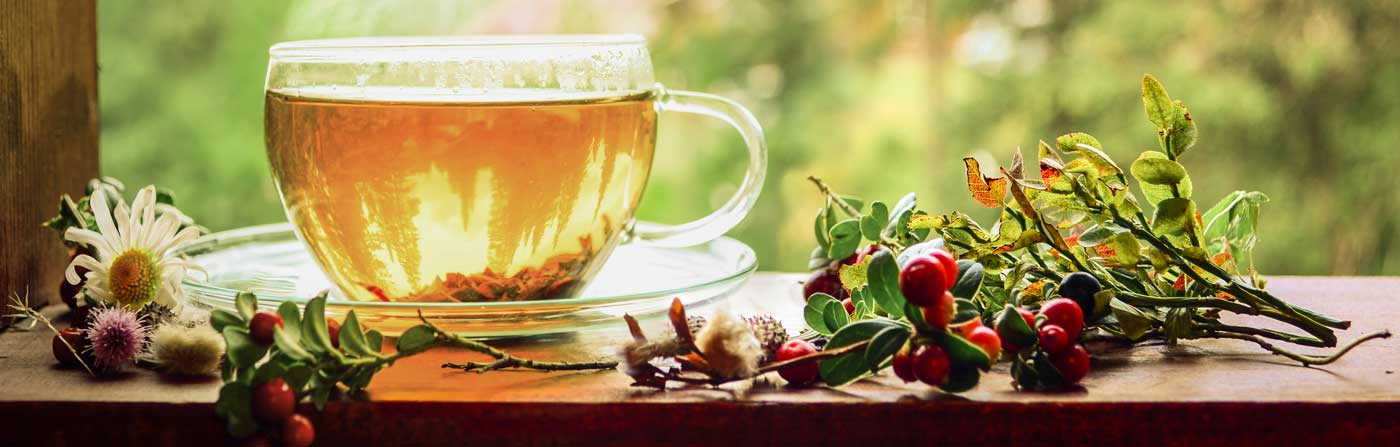 Cup herba tea